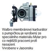 foto36171